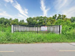 For SaleLandRangsit, Patumtani : ขาย ที่ดิน ถมแล้ว ล้อมรั้วคอนกรีตอย่างดีแล้ว ซอยบงกช 9 ถนนรังสิต–นครนายก 31 (เลียบคลอง 2)  ใกล้วัดพระธรรมกาย ใกล้ตลาดไท  อ.คลองหลวง ปทุมธานี