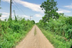 For SaleLandRangsit, Patumtani : ขาย ที่ดินเปล่า ซอยตะวันนา ถนนเลียบคลอง 6 รังสิต–นครนายก ใกล้ม.เทคโนโลยีราชมงคลธัญบุรี ออกถนนธัญบุรี-วังน้อยได้ ต.คลองหก อ.คลองหลวง ปทุมธานี