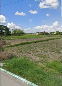 For SaleLandChiang Rai : ขายที่ดินถูกมากทำเลทอง เชียงราย  Land for sale, very cheap, prime location, Chiang Rai