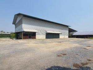 เช่าโกดังนครปฐม พุทธมณฑล ศาลายา : ให้เช่าโกดัง พร้อมสำนักงาน พร้อมบ้านพักคนงาน สามควายเผือก นครปฐม ที่ดิน 3 ไร่ มีรั้วรอบ พื้นที่โกดัง 1,500 ตารางเมตร รถคอนเทนเนอร์ เข้าได้