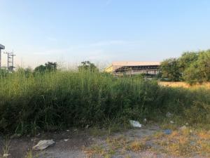 For SaleLandMahachai Samut Sakhon : K1192ขายที่ดิน ใน นาดี เมืองสมุทรสาคร เนื้อที่ 739 ตรว แปลงมุม
