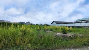 ขายที่ดินอ่อนนุช อุดมสุข : ขาย ที่ดิน อ่อนนุช พัฒนาการตัดใหม่ 360 ตร.วา ทำเลดี ห่างถนนใหญ่เพียง 350 เมตร