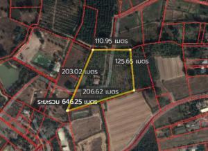 For SaleLandChachoengsao : ขายด่วนที่ดินเพื่อการเกษตร 15-2-79 ไร่ มีสวนผลไม้ผสม มีบ้านเดี่ยวชั้นเดียว 1 หลัง ถนนเทศบาล5 ตำบลเกาะขนุน ฉะเชิงเทรา