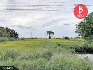For SaleLandAyutthaya : ขายที่ดินเปล่า 30 ไร่ 74.0 ตารางวา อุทัย พระนครศรีอยุธยา