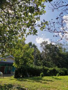 ขายที่ดินอุบลราชธานี : ที่ดินพร้อมบ้านสวน1 หลัง  สงบ ร่มเย็น อยู่ ต.ในเมือง จ.อุบลฯ ที่ดินสวยมาก