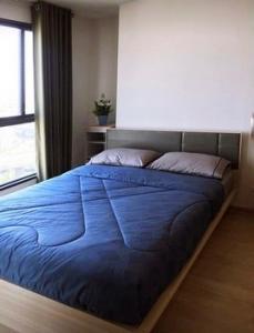 For RentCondoBangna, Lasalle, Bearing : ให้เช่า Ideo o2 ตึกA ชั้น 21  Studio type ขนาดพื้นที่ 28.5 ตร.ม. City View
