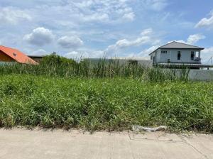 For SaleLandRangsit, Patumtani : ขายที่ดิน  100 ตารางวา  สุสวาทซ.6  ลำลูกกาคลอง4  ต.บึงลาดสวาย  อ.ลำลูกกา  ปทุมธานี