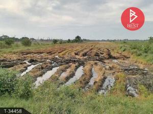 For SaleLandAyutthaya : ขายที่ดินเปล่า เนื้อที่ 14 ไร่ 2 งาน วังน้อย พระนครศรีอยุธยา