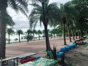 For SaleLandPattaya, Bangsaen, Chonburi : ขายที่ดินติดชายหาด 2ไร่ 88 ตรว. พัทยา  (ติดเจ้าของ)