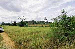 For SaleLandHua Hin, Prachuap Khiri Khan, Pran Buri : Beautiful Plot of Land for Sale 7 Rai