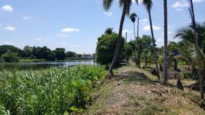 ขายที่ดินนครปฐม พุทธมณฑล ศาลายา : ที่ดินติดแม่น้ำนครชัยศรี
