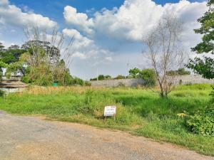 For SaleLandRangsit, Patumtani : ขาย ที่ดิน ซอยเอราวัณ 6 (ซอยบ้านสวน) ถนนเอราวัณ 1 (เลียบคลอง 2) ใกล้วัดพระธรรมกาย ใกล้ตลาดไท ต.คลองสอง อ.คลองหลวง ปทุมธานี