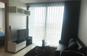 เช่าคอนโดพัทยา บางแสน ชลบุรี : E555 Rent ให้เช่า The Riviera Wongamat Beach Condominium Pattaya  36ตรม มีเครื่องซักผ้า