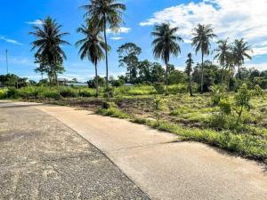 For SaleLandPattaya, Bangsaen, Chonburi : ที่ดินห้วยใหญ่พัทยา
