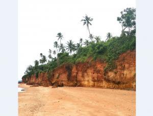 ขายที่ดินหัวหิน ประจวบคีรีขันธ์ : (เจ้าของขาย) ที่ดินติดทะเล ชายหาดฝั่งแดง บางสะพานน้อย ประจวบคีรีขันธ์ จุด Unseen ของจังหวัด ทำเลดีเยี่ยม เหมาะลงทุน