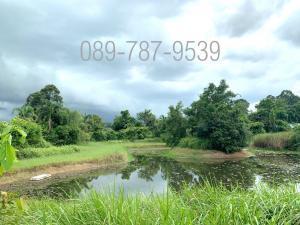 For SaleLandPrachin Buri : Land for sale , 17 rai 44 sq.wah, Nong Phong Subdistrict, Si Maha Pho District, Prachin Buri Province