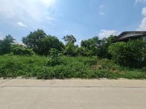 For SaleLandChachoengsao : ขายที่ดิน 100 ตารางวา จังหวัด ฉะเชิงเทรา อำเภอเมือง  ตำบลบางตีนเป็ดถนนติดถนนสาธารณะประโยชน์