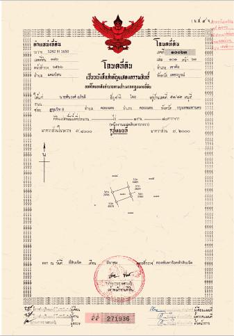 ขายที่ดินนครราชสีมา เขาใหญ่ : ขายที่ดิน The Peak เขาค้อ สูงที่สุดที่มีโฉนด 180 ตร.ว. 095-962-2494