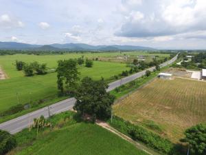 For SaleLandChiang Rai : Beautiful plot of land for sale, Chiang Rai, 716-3-95 rai.