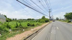 For SaleLandRangsit, Thammasat, Patumtani : ขายที่ดินคลองหลวง รังสิตนครนายก ลำลูกกา เนื้อที่ 5-3-72 ไร่ วัดพระธรรมกาย ธรรมศาสตร์ ปั๊มปตท. ปทุมธานี