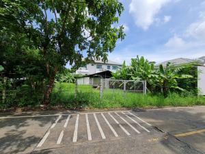 For SaleLandBangbuathong, Sainoi : ขายที่ดิน ทำเลสวย ติดถนน ราคาดี ฟรีค่าโอน!