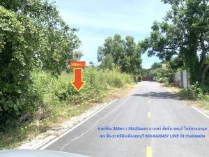 ขายที่ดินพัทยา บางแสน ชลบุรี : ขายที่ดินบางเสร่ ใกล้สวนนงนุช เนื้อที่ 89-368ตร.ว(แบ่งขายได้)