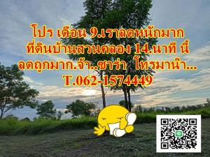 ขายที่ดินนครนายก : #โปรลดแรงที่ดินแปลงเล็กบ้านสวนคลอง_14 ลดราคามาเบาหวิว T.062-1574449
