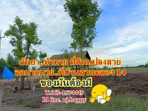 ขายที่ดินนครนายก : #กันยาท้าทายลดราคาที่ดินบ้านสวนคลอง_14. ของมันต้องมี T.062-1574449