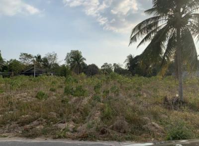 ขายที่ดินพัทยา บางแสน ชลบุรี ศรีราชา : ที่ดิน 1 ไร่ ใกล้อ่างเก็บน้ำหนองค้อ ในชุมชนเนินแสนสุข หน้ากว้างติดถนนลาดยาง 40 เมตร เจ้าของขายเอง