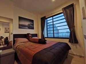 เช่าคอนโดพระราม 9 เพชรบุรีตัดใหม่ : คอนโดให้เช่า Rhythm Asoke 2  BA21_09_004_R2 ห้องสวย เครื่องใช้ไฟฟ้าครบ ราคา 15,999 บาท
