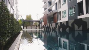 For RentCondoOnnut, Udomsuk : 🚨🚨 Condo for rent, Regent Home Sukhumvit 81, beautiful, fully furnished, near BTS On Nut 🚨🚨