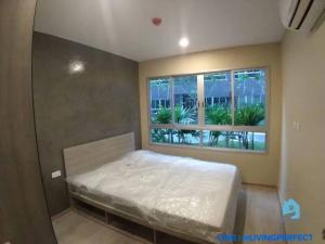 เช่าคอนโดเกษตรศาสตร์ รัชโยธิน : ✅ ว่าง ต.ค 64 ให้เช่าคอนโด เอลลิโอ เดล มอสส์ พหลโยธิน 34 ห้อง 1 Bed plus pool access