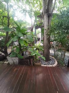For SaleLandChokchai 4, Ladprao 71, Ladprao 48, : Beautiful soil, 200 square meters, Prao 71 Soi Nak Niwat 37, width 32 m. x depth 25 m.