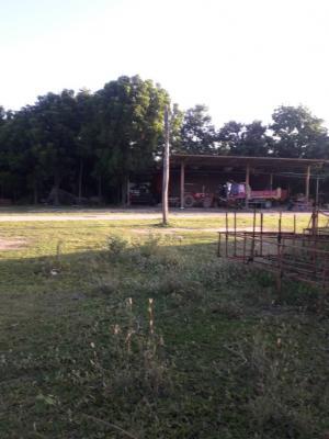 For SaleLandMaha Sarakham : Land for sale 46 rai THB 35 million, Maha Sarakham Province.