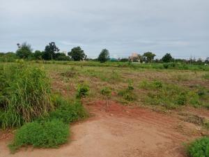 ขายที่ดินพัทยา บางแสน ชลบุรี : ขายที่ดิน 2 แปลง ถนนสุขุมวิท บางละมุง ชลบุรี