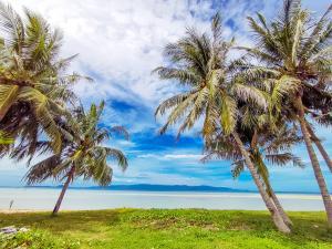 ขายที่ดินสมุย สุราษฎร์ธานี : ขายที่ดินติดทะเลเกาะพะงัน