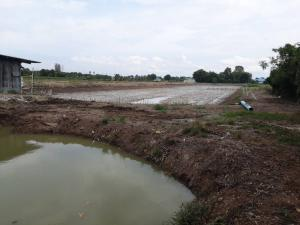 ขายที่ดินนครปฐม พุทธมณฑล ศาลายา : ขายที่ดิน 6 ไร่ 3 งาน 9 ตรว. อ.บางเลน จ.นครปฐม
