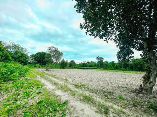 ขายที่ดินราชบุรี : 6408-295 ขาย ที่ดิน อำเภอสวนผึ้ง จังหวัดราชบุรี โฉนดครุฑแดง 2ฉบับติดกัน อยู่ติดแหล่งท่องเที่ยว