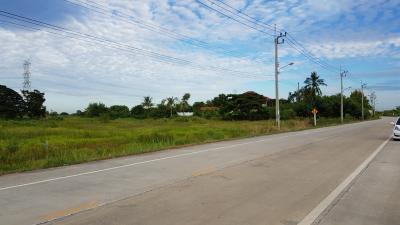 ขายที่ดินบางใหญ่ บางบัวทอง ไทรน้อย : ขายที่ดินเกือบ 8 ไร่ ซอยวัดพระเงิน บางใหญ่ ห่างถนนนครอินทร์-ศาลายา 80 เมตร ติดถนนพุทธมณฑลสาย 3 ตัดใหม่