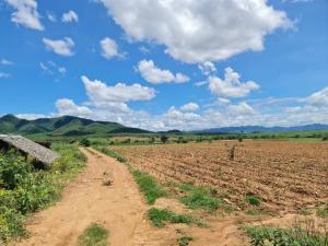 ขายที่ดินกาญจนบุรี : ขายที่ดินโฉนดนส.4 397 -1-75 ไร่  ที่ดินอยู่เขตพัฒนาเศรษฐกิจพิเศษ  อ.แก่งเสี้ยน จ.กาญจนบุรี