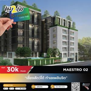เช่าคอนโดวิทยุ ชิดลม หลังสวน : ❝ MAESTRO 02 (For Rent) ❞ เลี้ยงสัตว์ได้ ทำเลเพลินจิต   LINE: @realrichious