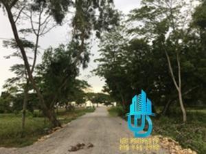 ขายที่ดินพัทยา บางแสน ชลบุรี ศรีราชา : #ขายที่ดินพัทยาทำเลดีใกล้ทะเล100 เมตรนาจอมเทียน12 ไร่ละ 33 ลบ.