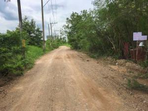 For SaleLandRangsit, Patumtani : Land for sale, 500 square wa, around Khlong Hok, Pathum Thani