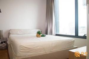 เช่าคอนโดลาดพร้าว เซ็นทรัลลาดพร้าว : ** ให้เช่า M Ladprao - 1 ห้องนอน ขนาด 30 ตร.ม. ห้องสวย เฟอร์ครบ ใกล้ BTS ห้าแยกลาดพร้าว **