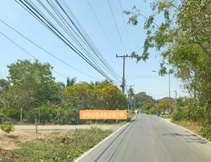 ขายที่ดินนครปฐม พุทธมณฑล ศาลายา : ขาย ที่ดินเปล่า ราคาถูกในอำเภอเมืองนครปฐม เนื้อที่ 14 ไร่ เป็นพื้นที่สีชมพู