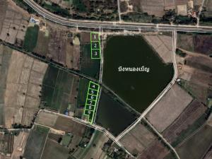 ขายที่ดินขอนแก่น : (แบ่งขายที่ดิน) ริมบึงหนองเบ็ญ เหมาะทำบ้านสวน เนื้อที่2-4งาน เมืองขอนแก่น