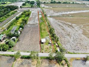 For SaleLandMin Buri, Romklao : Land for Sales 2 Rais (800 sq.wah) at Nongchock Bangkok (064-6988-8654)
