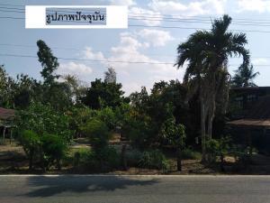 ขายที่ดินอุดรธานี : ขายที่ดิน ภายในหมู่บ้าน