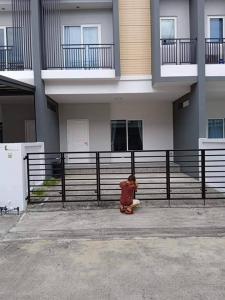เช่าบ้านรังสิต ธรรมศาสตร์ ปทุม : ให้เช่าบ้านมือ 1  ทาวโฮม แกรนด์ วิลล์ ปทุมธานี ราคาเช่า  25 ตรว.  9,500