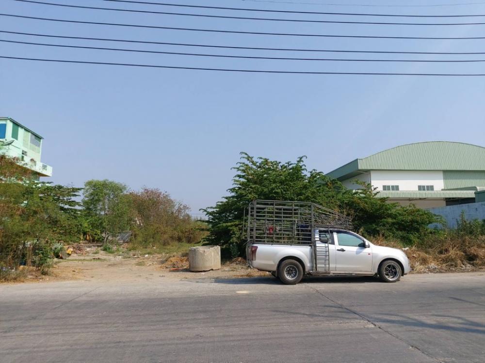 For SaleLandRangsit, Thammasat, Patumtani : Land for rent or sale, located in Soi Hong Yen Thep Phanom, near Thai market, near Aiyara market, on both sides of the road, Khlong 2, Pathum Thani